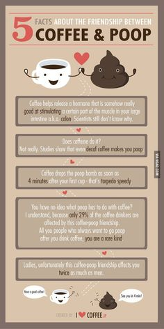 5 Facts About The Friendship Between Coffee And Poop