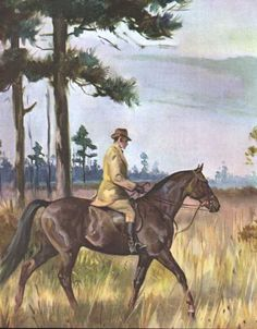 Tennessee Walking Horse: illustration by Wesley Dennis
