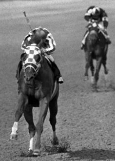 Secretariat winning the Preakness and the second stage of The Triple Crown