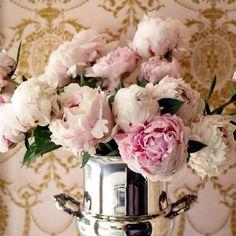 Peonies #peonies #forthehome #love #blooming