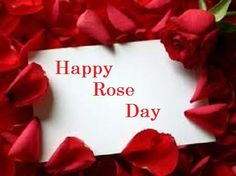 happy rose day wallpaper