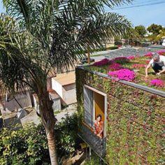 #VerticalGarden and #RoofGarden.