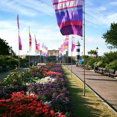 Photo by Joe Moser, from FB. Southsea readying itself for the Victorious Festival.