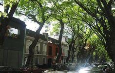 Excelente opção de hospedagem com preços mais camaradas nos hotéis boutique em Buenos Aires