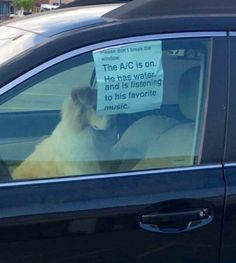 This is the way to do it. Leave your dog the same way you would want to be left in a car....music, water and ac