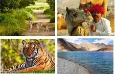 Best Asian Tours and Golden Triangle Tour Package in India for your Asian travel needs at Bestasiantours.com. Best Asian Tours is a professional tour and travels agency of the country.