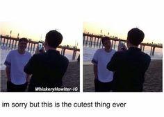 ••• Dan and Phil in Tom Ska's new vlog •••