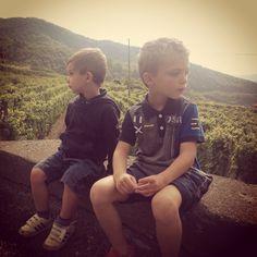 Relaxing over Ormeasco Guglierame Vineyard #ormeasco #guglierame