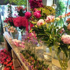 Un peu, beaucoup...  créateur végétal Paris ༺✿ ☾♡ ♥ ♫ La-la-la Bonne vie ♪ ♥❀ ♢♦ ♡ ❊ ** Have a Nice Day! ** ❊ ღ‿ ❀♥ ~ Wed 27th May 2015 ~ ❤♡༻ ☆༺❀ .•` ✿⊱ ♡༻ ღ☀ᴀ ρᴇᴀcᴇғυʟ ρᴀʀᴀᴅısᴇ¸.•` ✿⊱╮ ♡ ❊ **