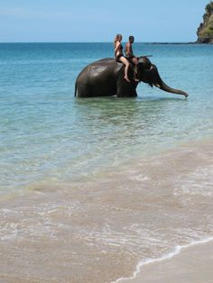 Sexy Woman riding bareback barefoot in bikini on an Elephant in the ocean/Sexy Frau reitet sattelos barfuß im bikini auf einem Elefant im Ozean . i MUST ride an elephant in thailand most beautiful of creatures. I Want To Travel, Beautiful Places To Travel, Thailand Elephants, Happy Elephant, Riding Horses, Ends Of The Earth, Pink Summer, Oh The Places You'll Go, Amazing Nature