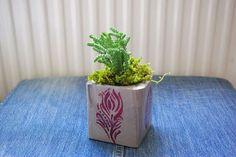 Beton saksı, concrete flowerpot, diy