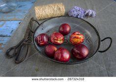 Peaches in the garden - stock photo