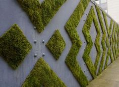 How to Make Moss Graffiti. Creating living, breathing moss graffiti is an eco-friendly and exciting way to make art! Also called eco-graffiti or green graffiti, moss graffiti replaces spray paint, paint-markers or other such toxic. Environmental Graphics, Environmental Design, Graffiti En Mousse, Wall Design, Diy Design, Design Ideas, Hoarding Design, Decoration Vitrine, Moss Art