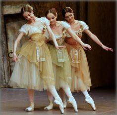Bolshoi's Giselle. ✯ Ballet beautie, sur les pointes ! ✯