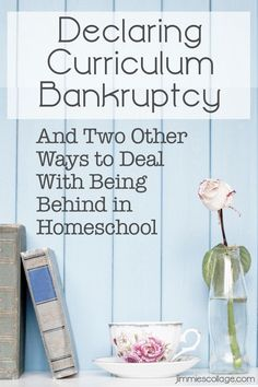Declaring Curriculum Bankruptcy And Two Other Ways to Deal With Being Behind in Homeschool