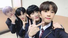 The Boyz sunwoo hwall Golden Child Bomin astro sanha Jaehyun, Extended Play, Kpop Posters, Kim Sun, Astro, This Is Love, Golden Child, Pop Singers, New Artists