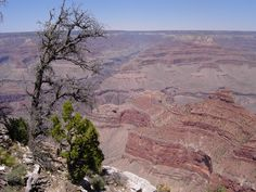 grand canyon. this is my favorite. it was a great day. the grand canyon did most of the work, i just took the picture.