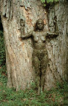 Ana Mendieta, Tree of Life Series, 1977