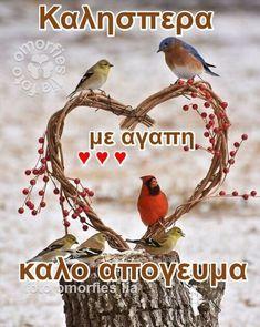 Good Afternoon, Good Morning, Wish, Inspirational Photos, Greek, Animals, Wallpapers, Decor, Inspiring Sayings