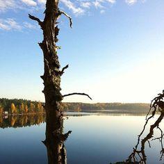 Tämä syksy on kyllä ollut poikkeuksellisen upea. Kiitos kuvasta @theseshoesweremadeforwalking  Oletko sinä tehnyt jotain hienoja syysretkiä kotimaassa? Missä kävit? #järvisuomi #finland #syksy #autumn #mondolöytö #mondolehti