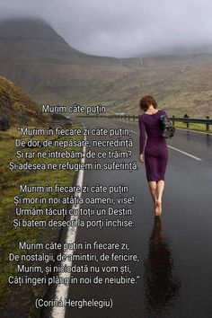 O SEARĂ PLĂCUTĂ! Love Poems, Spiritual Life, Motto, Childhood Memories, Spirituality, Country Roads, Thoughts, Humor, Words