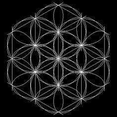 sacred  geometry!