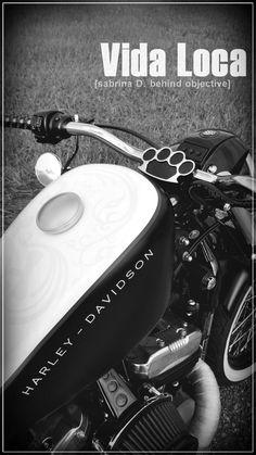 Sportster Harley Bobber Red Line Designed by Vida Loca Choppers in 2011 Harley Bobber, Kustom, Choppers, Line Design, Red, Chopper, Motorcycles, Helicopters