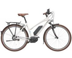 Bosch Intuvia Display Platinium Elektrofahrräder
