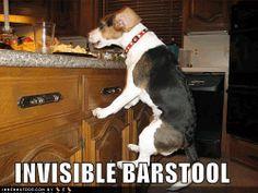 #lol Invisible barstool