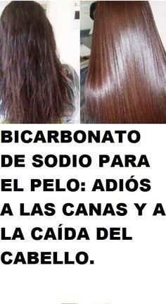 Pin by Liliana Lopez on remedios caseros - Crochet Brazil Beauty Care, Beauty Hacks, Hair Beauty, Liliana Lopez, Grey Hair Remedies, Cabello Hair, Rides Front, Hair Loss Treatment, Diy Hairstyles