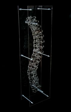 Structural Spine, 2009 | Created by Federico Carbajal