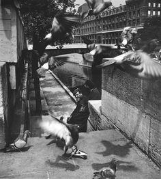 birdsong217: Louis Stettner Clochard et pigeons près du...