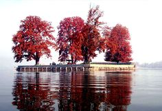 Kashmir tour packages- Jammu and Kashmir is a beautiful state of India, located in the north part. Kashmir tour packages offer lakes, high mountains, hills, beautiful rivers and much more to tourist. Srinagar, Jammu And Kashmir Tourism, Kashmir India, Kashmir Pakistan, States Of India, Paradise On Earth, Shimla, Vacation Packages, India Travel