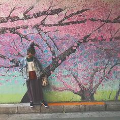【yunchan1203】さんのInstagramをピンしています。 《桜の花びらが髪についた時みたいな小さな喜び。  そんな日常の些細な幸せを桜の花びらにたとえたら 一枚の花びらでもほっこりするけど  その花びらを一つ一つ大切に集めたら 大きな桜の木のように 満開に咲き誇る日がくるよね。  #桜 #どうしても1列桜シリーズで繋げたかった #てかはよ寝ろよ #明日あったかいらしいよ #yukivoice #spring  #photography  #pink  #春 #outfit  #fashion  #instagood  #love #happy #幸せ #花 #花のある暮らし #design #art #paint #中目黒 #camera #写真》