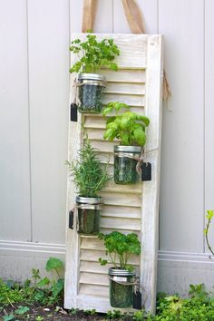 We end up having two to three shutters rotting in the backyard or lying uselessly in the attic; if you to use them for something really good, get ideas from this lovely woman. She has incredible ideas to transform the old shutters. Mason Jar Herbs, Mason Jar Herb Garden, Diy Herb Garden, Mason Jars, Garden Web, Garden Pallet, Vegetable Garden, Herbs Garden, Garden Trellis