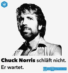 Chuck Norris schläft nicht. Er wartet - Chuck Norris Witze Cuck Norris, Jim Carrey Quotes, Chuck Norris Funny, Steven Seagal, Famous Movie Quotes, Historical Quotes, Funny Movies, Comedy, Funny Pictures