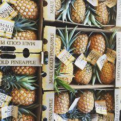 Maui Pineapple tours! One of the many fun things to do on Maui, Hawaii.