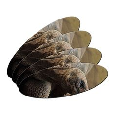Sphynx Cat On Black  Pet DoubleSided Oval Nail File Emery Board Set 4 Pack ** Read more reviews of the product by visiting the link on the image.