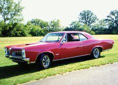 1966 Pontiac GTO Vintage Signs, Vintage Cars, 1969 Gto, 67 Pontiac Gto, Gto Car, Old Muscle Cars, Classic Hot Rod, Pontiac Grand Prix, American Classic Cars