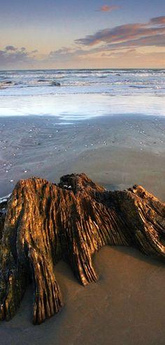 Ohope Beach, Bay of Plenty, North Island, NZ Camping Spots, South Island, Small Island, Pacific Ocean, Fiji, Adventure Time, Scenery, Heaven, Australia