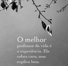 Bom dia Portuguese Quotes, Quiet People, Some Words, Good Vibes, Positive Thoughts, Quote Of The Day, Wisdom, Positivity, Messages