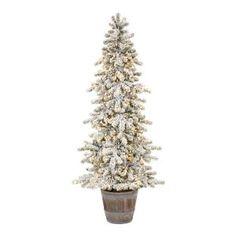 Tall Skinny Christmas Tree, Christmas Tree Base, Pencil Christmas Tree, Potted Christmas Trees, Small Christmas Tree Decor, Xmas, Christmas Ideas, Modern Christmas, Rustic Christmas