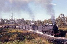 A Trip To Hawkmount – December 1970 - Stories From The Days Of Steam Sight & Sound, Trains, December, Australia, Day, Photography, Photograph, Fotografie, Photoshoot