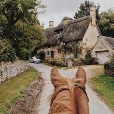 My favorite view is from the back of a horse. Cute Horses, Horse Love, Beautiful Horses, English Country Cottages, Cotswold Villages, Types Of Horses, Horse Stables, Mundo Animal, Jolie Photo