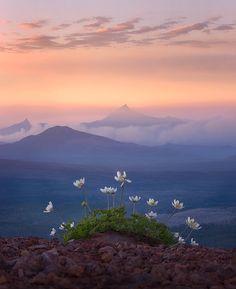 The Ridge by Marc Adamus