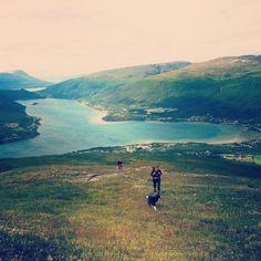 The Fjords Mountains, Nature, Travel, Naturaleza, Viajes, Destinations, Traveling, Trips, Nature Illustration