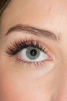 When done professionally eye lash extensions give you long lushes, beautiful lashes that look natural. Kiss Makeup, Beauty Makeup, Eye Makeup, Hair Makeup, Makeup Tips, Hair Beauty, Natural Eyelash Growth, Natural Lashes, Eyelash Extensions Aftercare