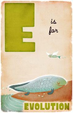 E is for Evolution 4x6 by dpsullivan on Etsy