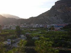El último reducto morisco del Levante español tras la orden de expulsión decretada por Felipe III: Valle del Ricote (Murcia)