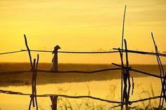 Thiếu nữ trên cầu khỉ